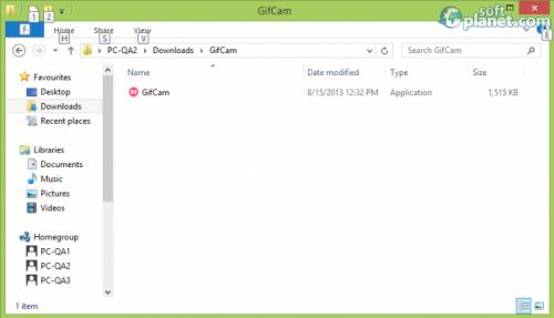 GifCam Screenshot3