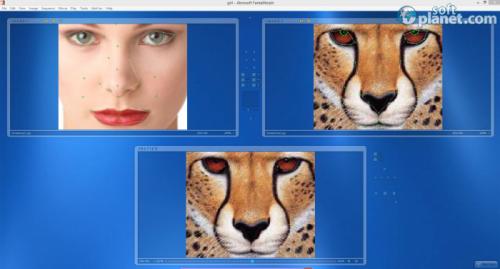 Abrosoft FantaMorph 5.4.5
