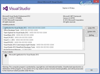 Microsoft Visual Studio Professional Screenshot2